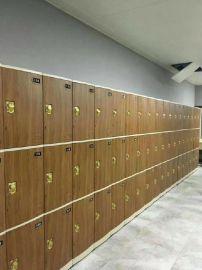 河北邯郸健身房ABS塑料更衣柜储物柜