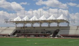 河南看台雨棚厂家,学校操场主席台顶棚,体育场主席台雨篷