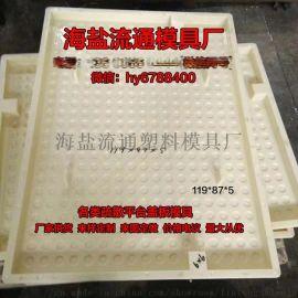 定制 地铁疏散平台盖板塑料模具 抗震高铁沟盖板模具