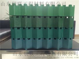 68厚植草格/停车场绿化/塑料加强植草格