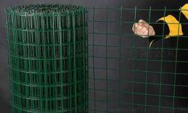 现货浸塑铁丝网 荷兰网 养殖护栏围栏网 厂家直销