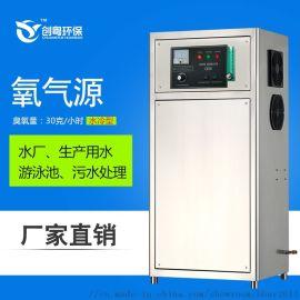 广州创粤30g游泳池臭氧发生器 水处理