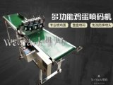 沈阳w600智能型蛋托鸡蛋喷码机
