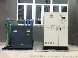 神岳小型制氮机 食品小型制氮机