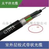 太平洋 GYDTA-48B1 48芯室外帶狀光纜