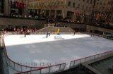 冰球場圍欄 抗曬冰球場圍欄 冰球場圍欄案例分析
