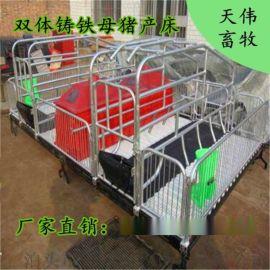【天伟畜牧】猪用分娩床多少钱 双体母猪产床怎么安装