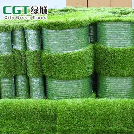 仿真草坪 仿真草皮价格 装饰人造草