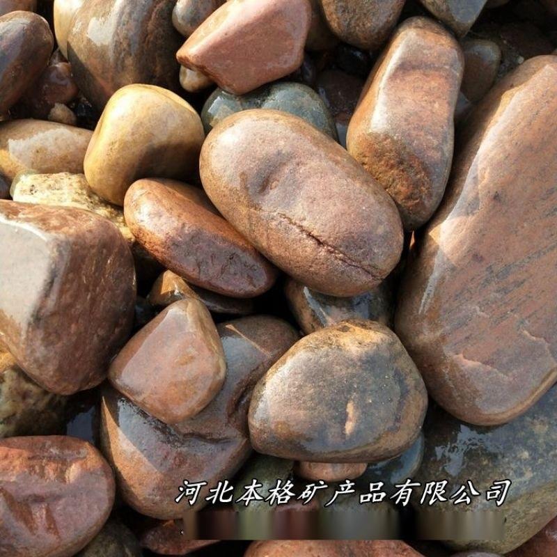 本格供应水处理鹅卵石 污水净化鹅卵石 机制鹅卵石