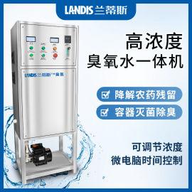 高浓度氧气源臭氧发生器 污水臭氧处理设备