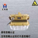 壁式电磁感应防爆节能免维护无极灯40W50W