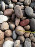 河卵石 河北石家莊3-8公分河卵石生產廠家