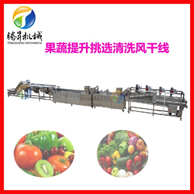 果蔬分拣清洗风干流水线 净菜加工机械设备厂家