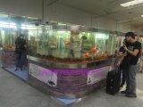 厦门亚克力鱼缸厂家直销大型亚克力鱼缸 生态景观水族箱