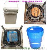 生产加工 27L食品桶注射模具