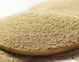 啤酒菌种、微生物制剂、啤酒酵母供应济南销量高质量好