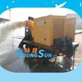 12寸柴油水泵機組  鑄鐵柴油機混流泵300HW-7