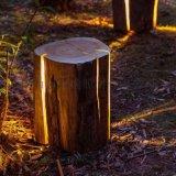 树脂植物造型草坪灯 恒逸草坪灯 树桩草坪灯