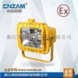 防爆投光燈ZBT808雙端、G12、金滷燈、鈉燈