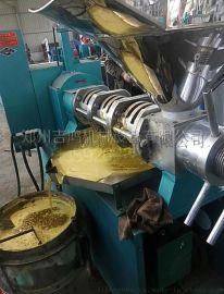 河南油菜籽榨油机|吉鸿榨油机