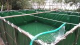 篷布鱼池,篷布鱼池厂家,篷布鱼池供应商