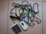 太阳能LED灯串 (L056M)