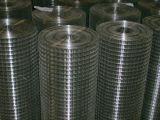 1寸镀锌电焊网