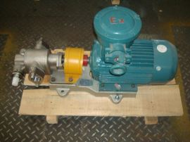自产自销 不锈钢齿轮油泵 304 306不锈钢油泵