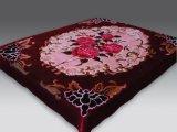 拉舍爾毛毯童毯經編滌綸壓花超柔出口中東歐洲南美市場