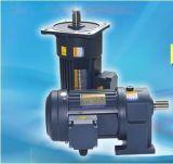 单相220V电压400W变频器调速电机