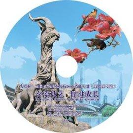 DVD光盘打印/VCD光盘打印