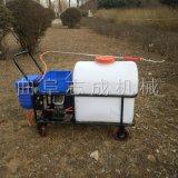直销推车式电动喷雾器室内消毒喷洒机农用喷雾器