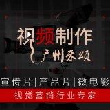 拍摄制作企业宣传片产品视频/宣传片品牌故事微电影MV病毒视频