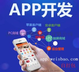 APP软件开发-自打包