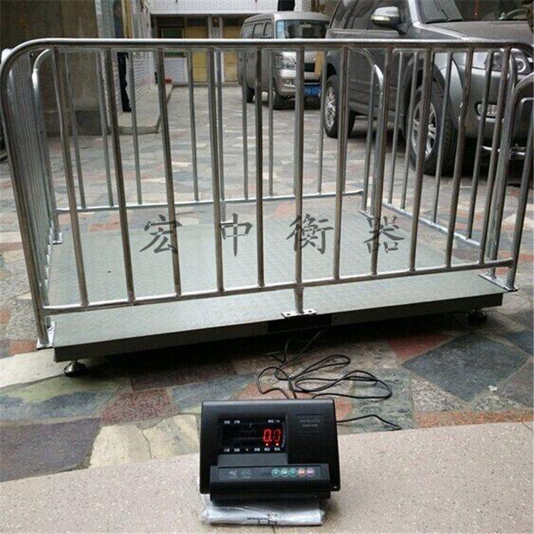 广西来宾1吨围栏地磅秤两开门牲畜秤 厂家直销