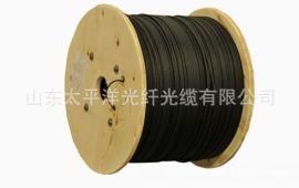 【太平洋】GJXH-2B6a2磷化钢丝皮线光缆单模太平洋光纤厂家**