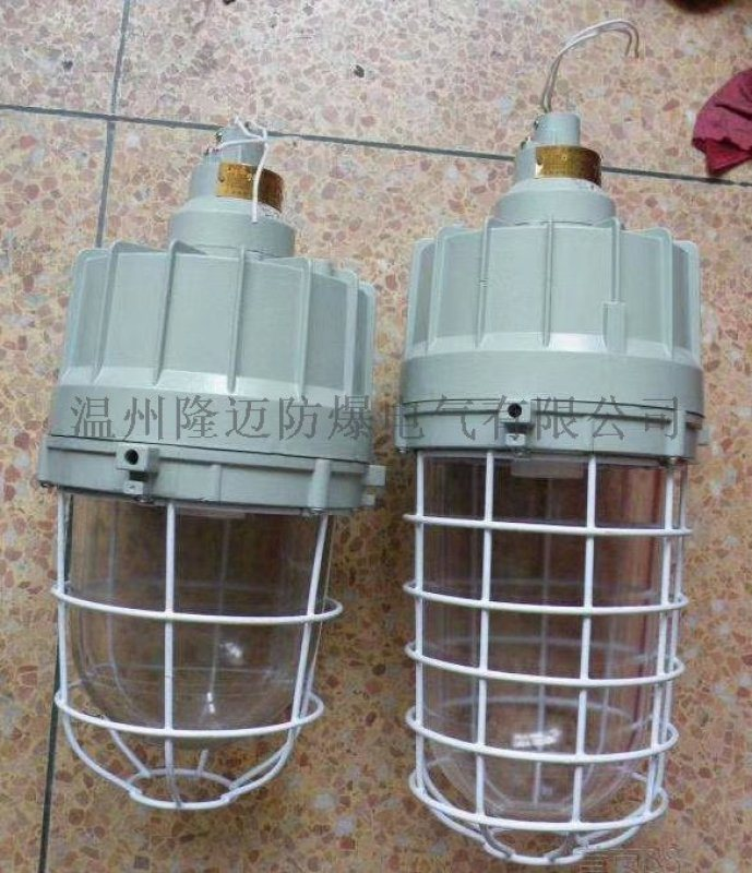BAD40/60/100W防爆节能无极灯