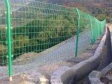 雙邊絲農場菜園果園防護網