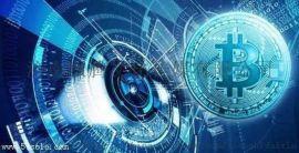 铜川商城版双轨直供软件系统开发