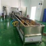 DR果蔬全自动生产线 果蔬蒸煮机 果蔬清洗机