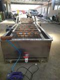 果蔬清洗机生产厂家青菜气泡清洗机