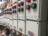 BXK-A2D2B1防爆按钮开关盒