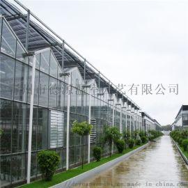 智能温室大棚 温室施工方案 生态餐厅温室