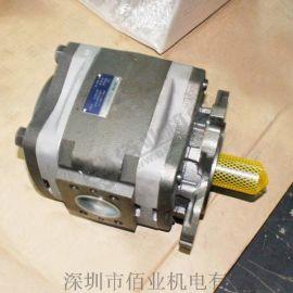 IPVP7-200-111德国进口齿轮泵