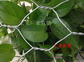 生态石笼网指定生产厂家