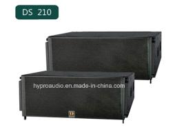 供应DIASE--DS210,线阵音箱厂家直销,双10寸线阵音箱,舞台线性音箱
