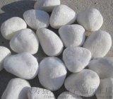 山西拋光白卵石   永順白卵石2-3釐米促銷