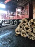 天津鲁立供应 现货36*0.23mm桥梁预应力波纹管钢带、波纹管带钢