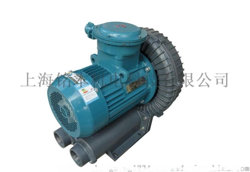 1.3KW防爆高壓鼓風機 CT4防爆漩渦氣泵
