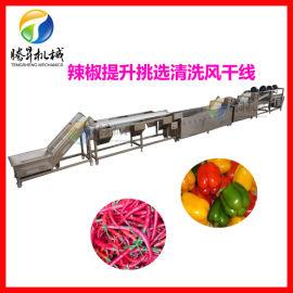 净菜加工生产线 辣椒 蔬菜清洗机机 自动清洗风干线